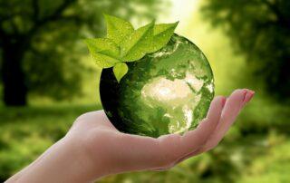 Biomasa celulosa